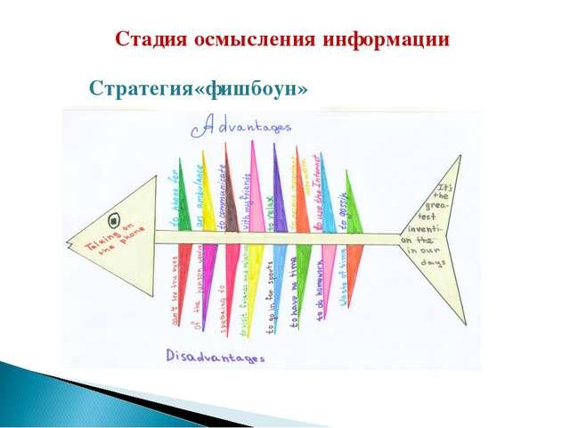 Стадия осмысления информации Стратегия«фишбоун»