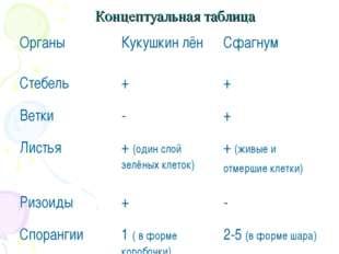 Концептуальная таблица  ОрганыКукушкин лёнСфагнум Стебель++ Ветки-+