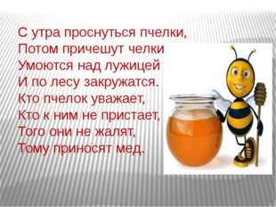 С утра проснуться пчелки, Потом причешут челки, Умоются над лужицей И по лесу