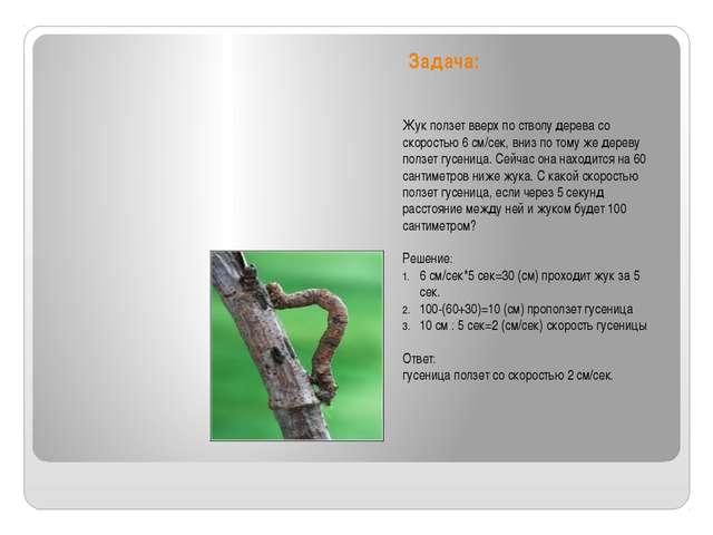 Задача: Жук ползет вверх по стволу дерева со скоростью 6 см/сек, вниз по тому...