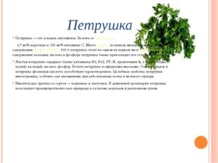 Петрушка Петрушка — это кладезь витаминов. Зелень ее содержит до 1,7 мг% каро