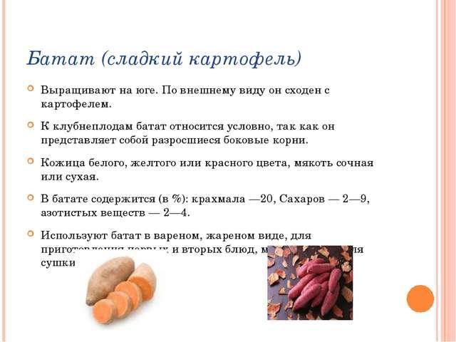 Батат (сладкий картофель) Выращивают на юге. По внешнему виду он сходен с кар...