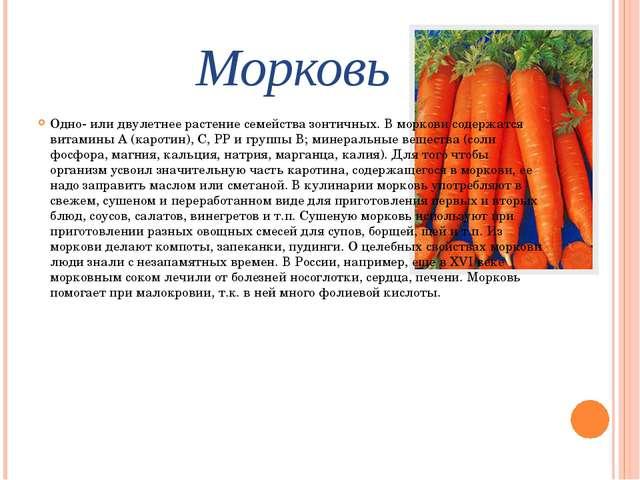 Морковь Одно- или двулетнее растение семейства зонтичных. В моркови содержатс...