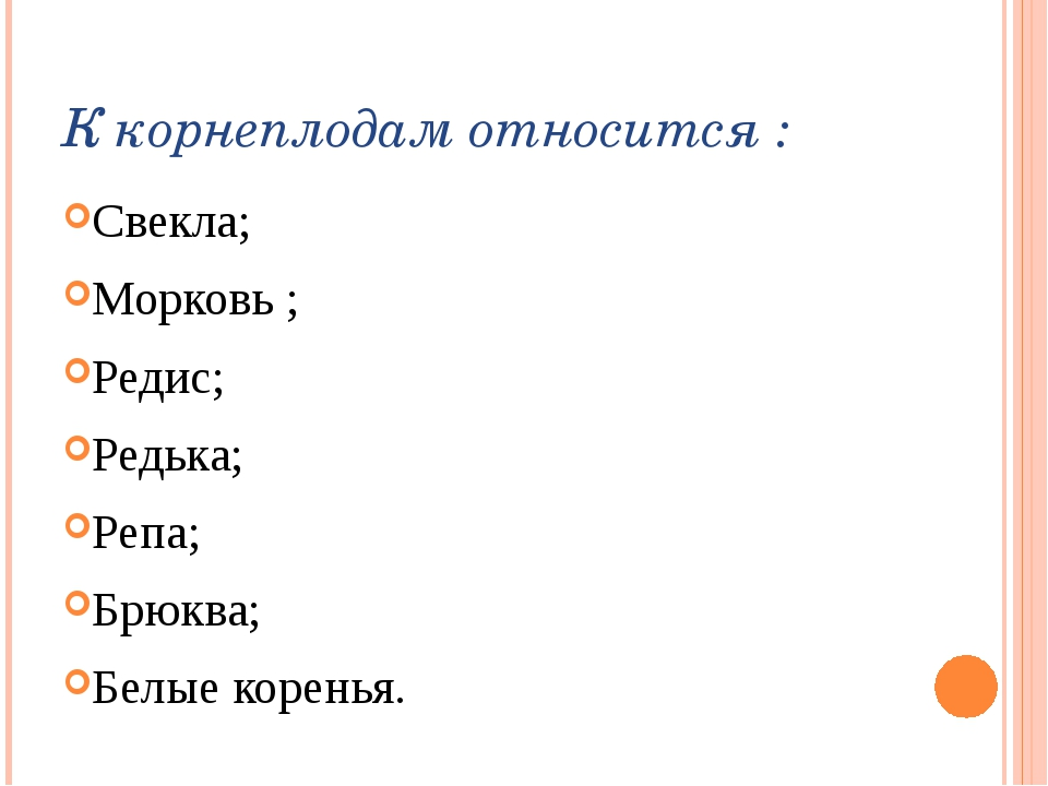 К корнеплодам относится : Свекла; Морковь ; Редис; Редька; Репа; Брюква; Белы...