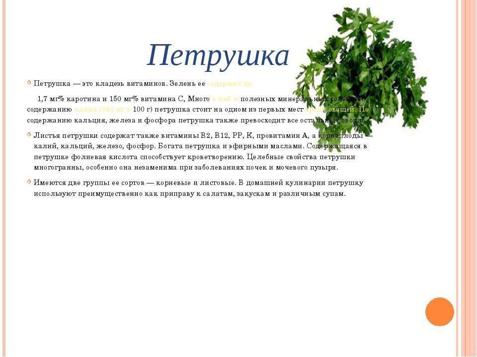 Петрушка Петрушка — это кладезь витаминов. Зелень ее содержит до 1,7 мг% каро...