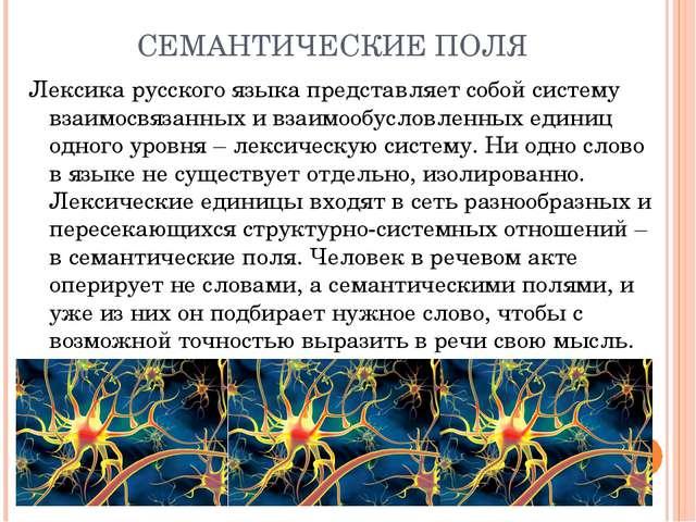 СЕМАНТИЧЕСКИЕ ПОЛЯ Лексика русского языка представляет собой систему взаимосв...