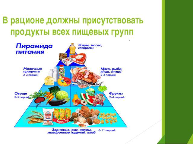 В рационе должны присутствовать продукты всех пищевых групп