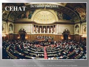 Законодательная власть во Франции принадлежит Парламенту, включающему в себя