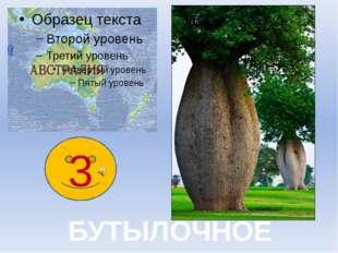 4 Мыльное дерево