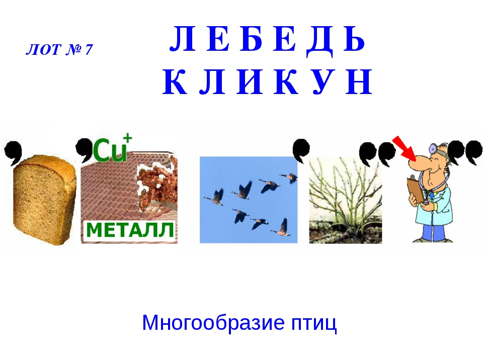Л Е Б Е Д Ь К Л И К У Н Многообразие птиц ЛОТ № 7