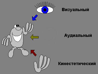 Тест аудиал, визуал, кинестетик. Диагностика доминирующей перцептивной модальности С. Ефремцева.
