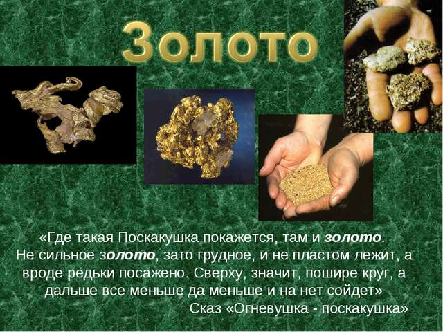 «Где такая Поскакушка покажется, там и золото. Не сильное золото, зато грудно...