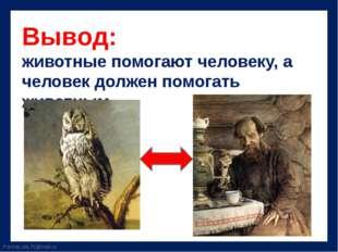 Вывод: животные помогают человеку, а человек должен помогать животным. Fokina