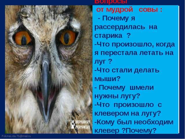 Вопросы от мудрой совы : - Почему я рассердилась на старика ? -Что произошло,...