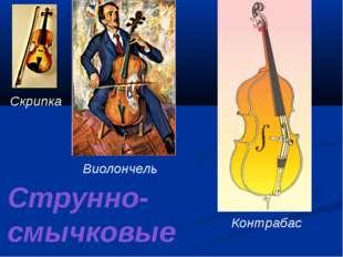 Скрипка Виолончель Контрабас Струнно-смычковые