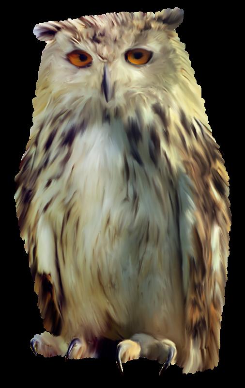 Owls Сова Совы ночью лишь опасны, Днем - сонливы, безучастны…