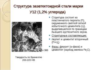 Структура заэвтектоидной стали марки У12 (1,2% углерода) Структура состоит из