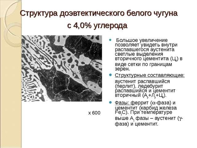 Структура доэвтектического белого чугуна с 4,0% углерода Большое увеличение п...