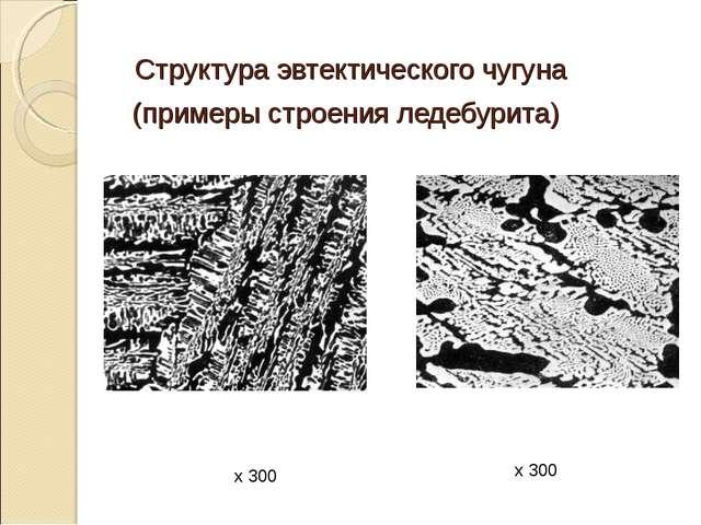 Структура эвтектического чугуна (примеры строения ледебурита) х 300 х 300