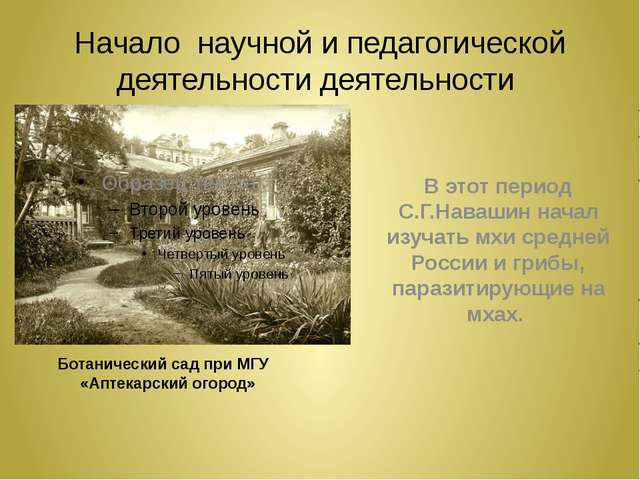 Начало научной и педагогической деятельности деятельности Ботанический сад пр...