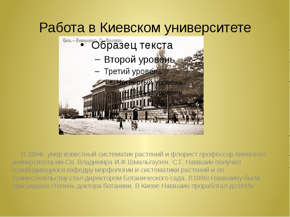 Работа в Киевском университете В 1894г. умер известный систематик растений и...