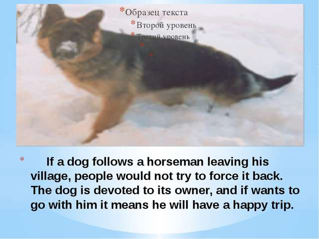 If a dog follows a horseman leaving his village, people would not try to for...