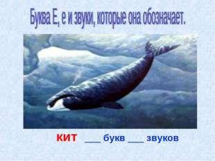 кит ___ букв ___ звуков