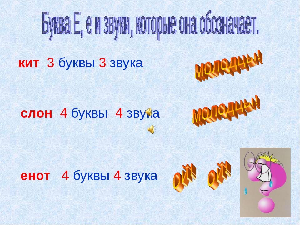 кит 3 буквы 3 звука слон 4 буквы 4 звука енот 4 буквы 4 звука