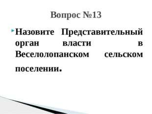 Назовите Представительный орган власти в Веселолопанском сельском поселении.