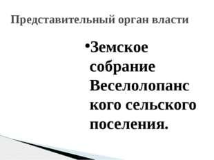 Земское собрание Веселолопанского сельского поселения. Представительный орган