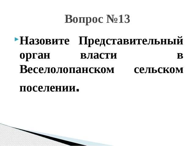 Назовите Представительный орган власти в Веселолопанском сельском поселении....