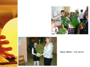 3. Экологическая работа Акция «Цветы – для школы»