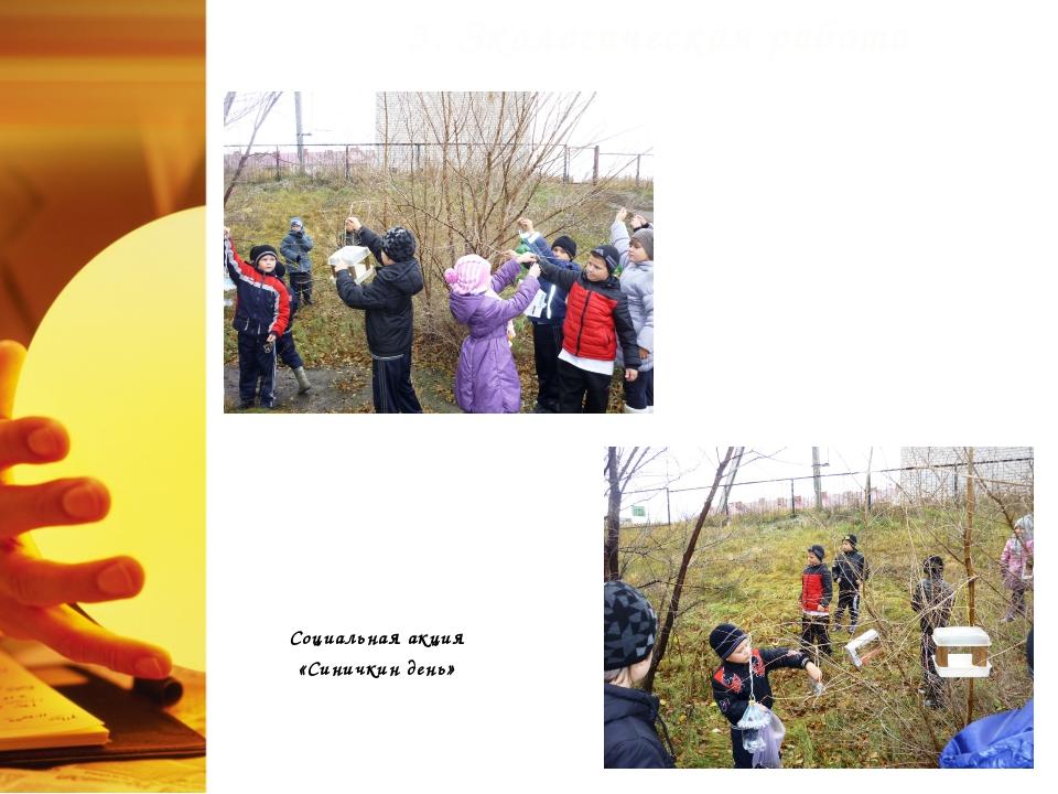 3. Экологическая работа Социальная акция «Синичкин день»