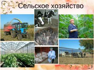 Сельское хозяйство