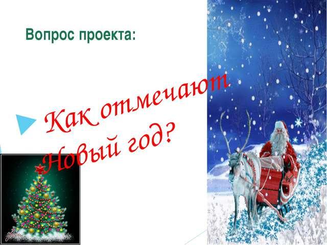 Вопрос проекта: Как отмечают Новый год?