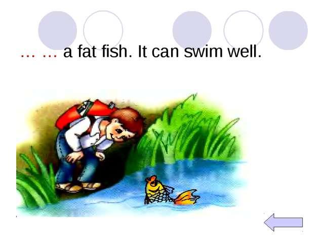 … … a fat fish. It can swim well.