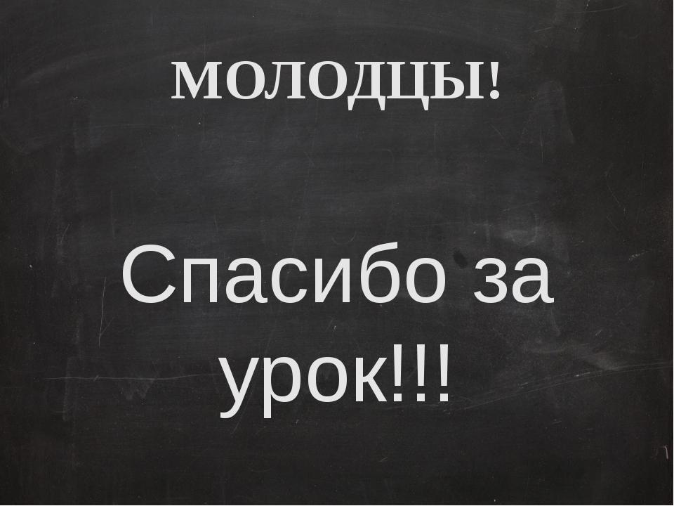 МОЛОДЦЫ! Спасибо за урок!!!