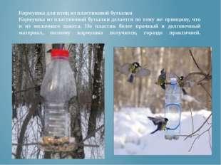 Кормушка для птиц из пластиковой бутылки Кормушка из пластиковой бутылки дела