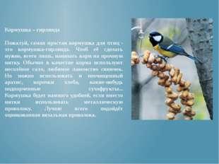 Кормушка – гирлянда Пожалуй, самая простая кормушка для птиц - это кормушка-г