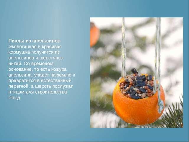Пиалы из апельсинов Экологичная и красивая кормушка получится из апельсинов и...