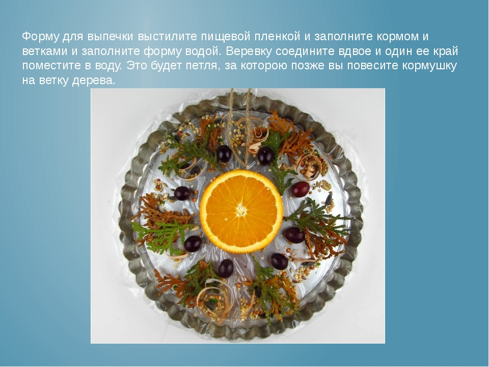 Форму для выпечки выстилите пищевой пленкой и заполните кормом и ветками и за...
