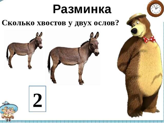 Разминка Сколько хвостов у двух ослов? 2