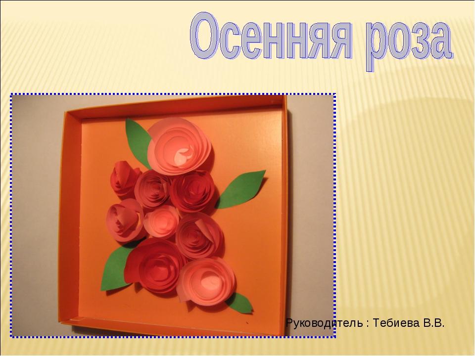 Руководитель : Тебиева В.В.