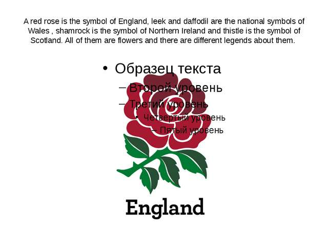 A red rose is the symbol of England, leek and daffodil are the national symbo...