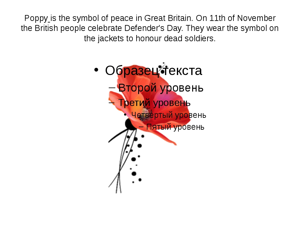 Poppy is the symbol of peace in Great Britain. On 11th of November the Britis...