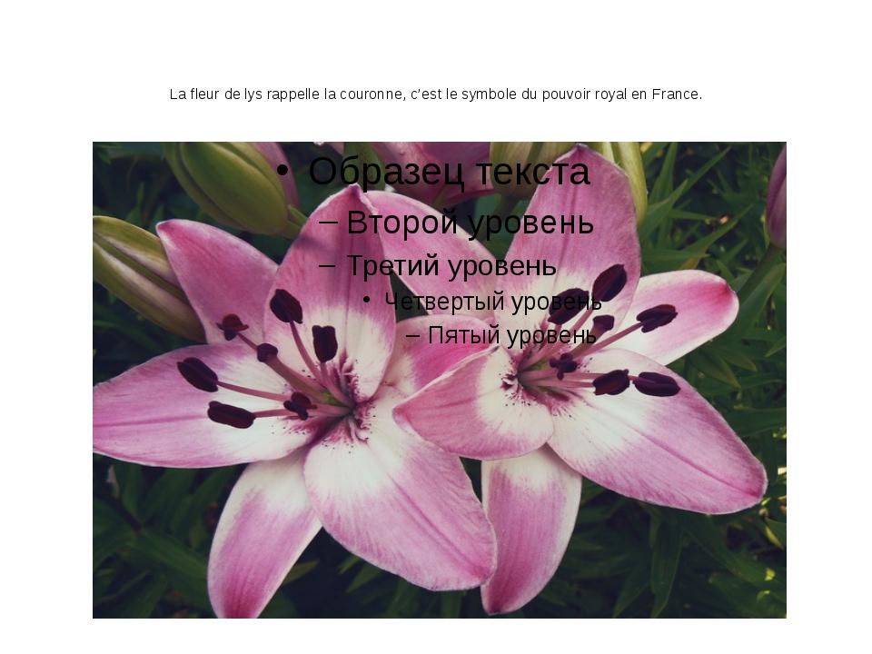 La fleur de lys rappelle la couronne, c'est le symbole du pouvoir royal en Fr...