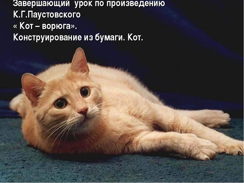 Завершающий урок по произведению К.Г.Паустовского « Кот – ворюга». Конструиро...