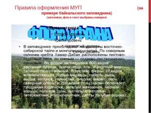 Правила оформления МУП (на примере байкальского заповедника) (заголовок, фон