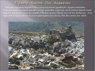 8000 тонн мусорных отходов в день и несколько тысяч грузовиков с мусором еже