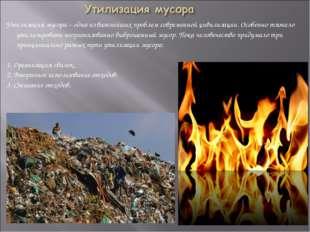 Утилизация мусора – одна из важнейших проблем современной цивилизации. Особен